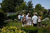 Open Gardens 2011 (101 of 164)