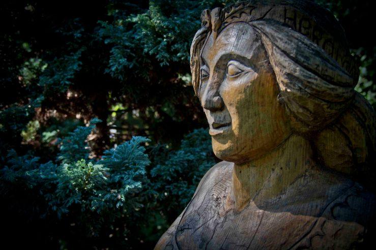 Open Gardens 2011 (107 of 164)