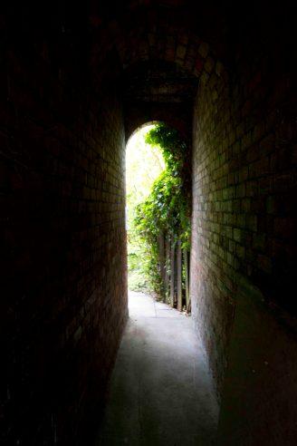 Open Gardens 2011 (12 of 164)