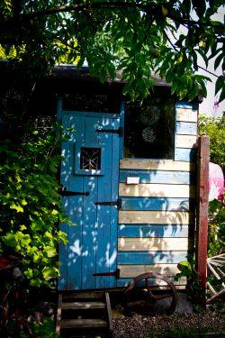 Open Gardens 2011 (121 of 164)