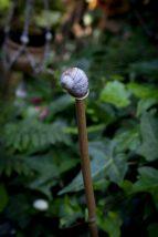 Open Gardens 2011 (145 of 164)