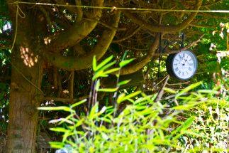 Open Gardens 2011 (146 of 164)