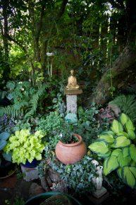Open Gardens 2011 (149 of 164)
