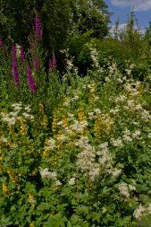 Open Gardens 2011 (15 of 164)