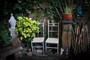 Open Gardens 2011 (150 of 164)