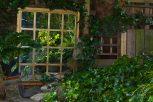 Open Gardens 2011 (151 of 164)