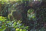 Open Gardens 2011 (152 of 164)