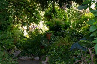 Open Gardens 2011 (153 of 164)