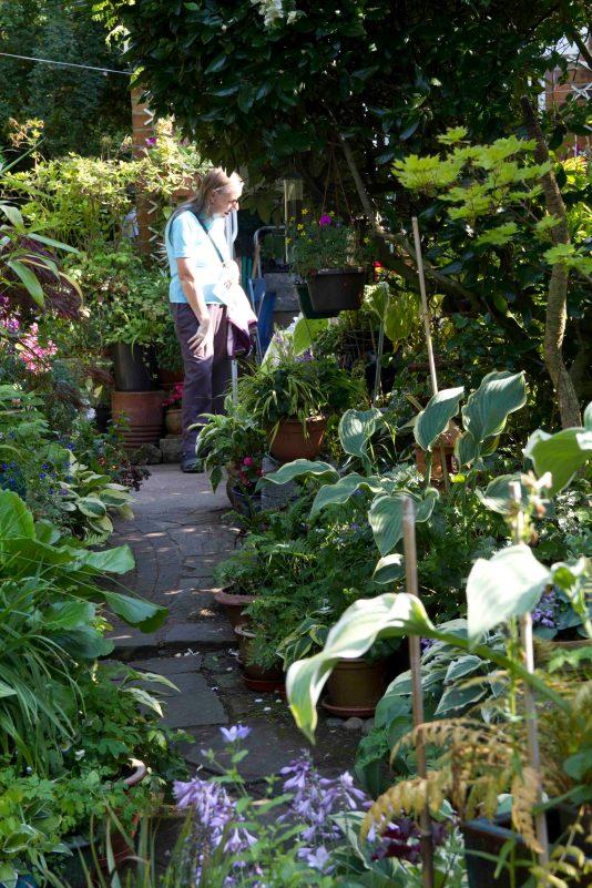 Open Gardens 2011 (156 of 164)