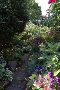 Open Gardens 2011 (159 of 164)