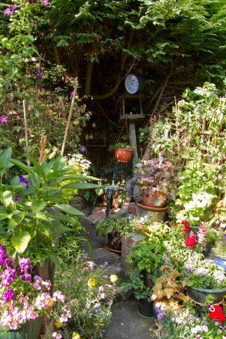 Open Gardens 2011 (161 of 164)
