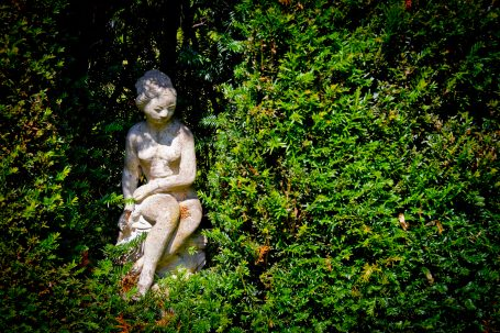Open Gardens 2011 (25 of 164)