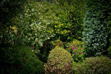 Open Gardens 2011 (26 of 164)