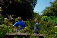 Open Gardens 2011 (33 of 164)