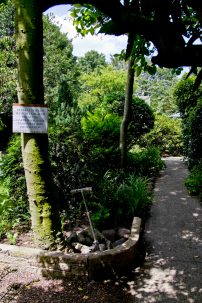 Open Gardens 2011 (35 of 164)